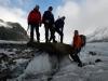 ледниковые грибы
